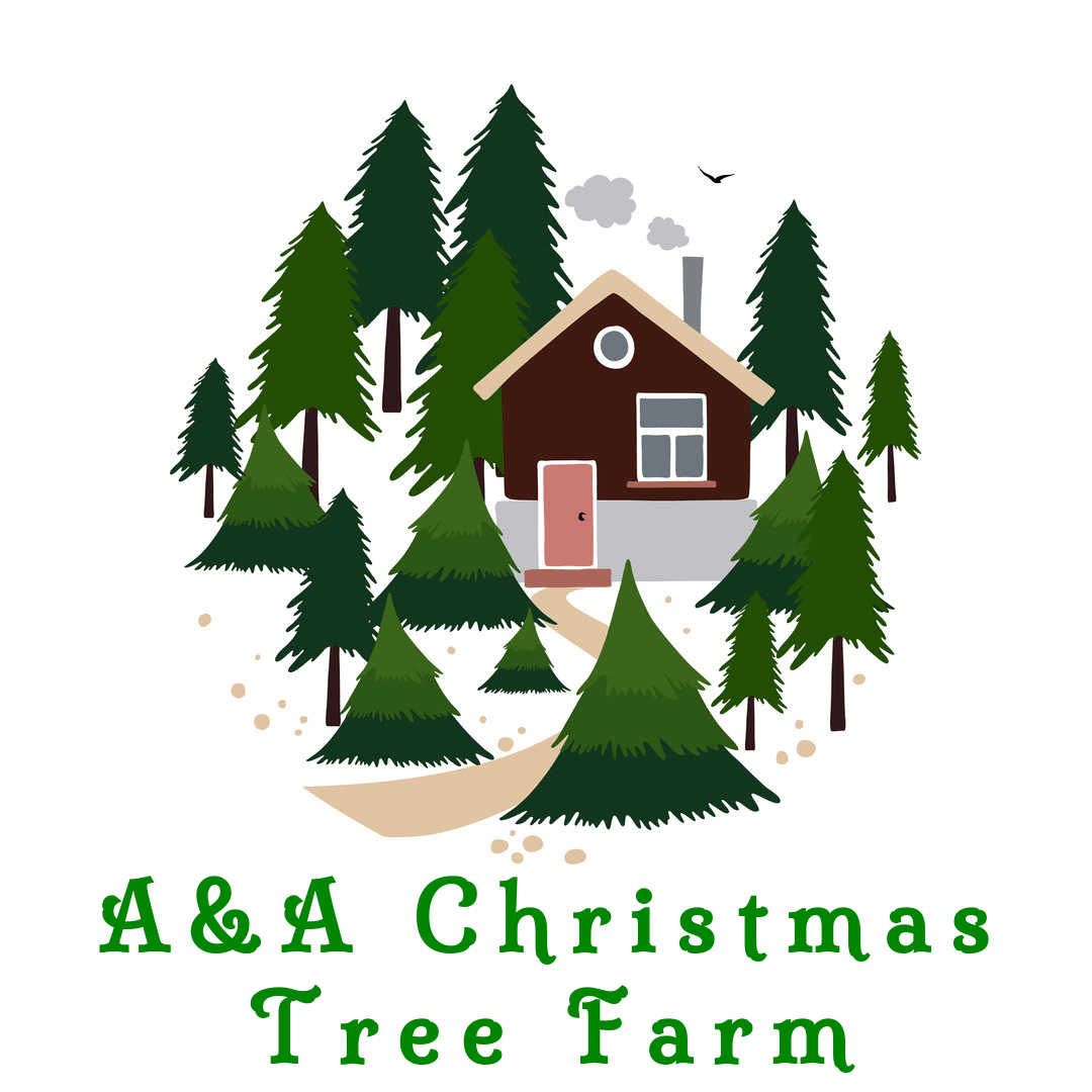 A & A Christmas Tree Farm